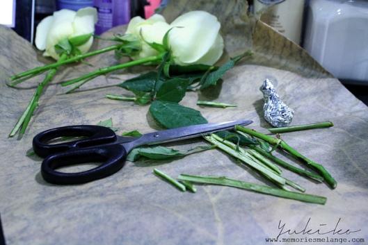 A Pair of Scissors